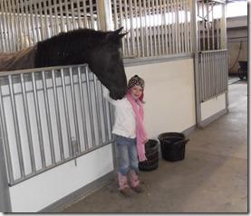 Blach Horse 3-18