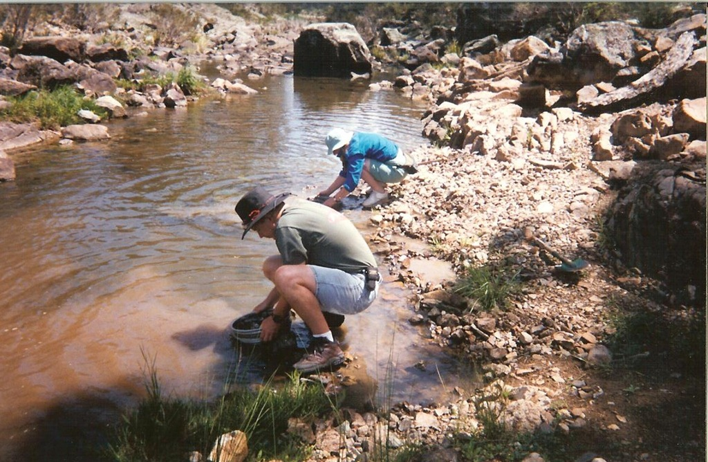 the traditional method of panning for gold in streams