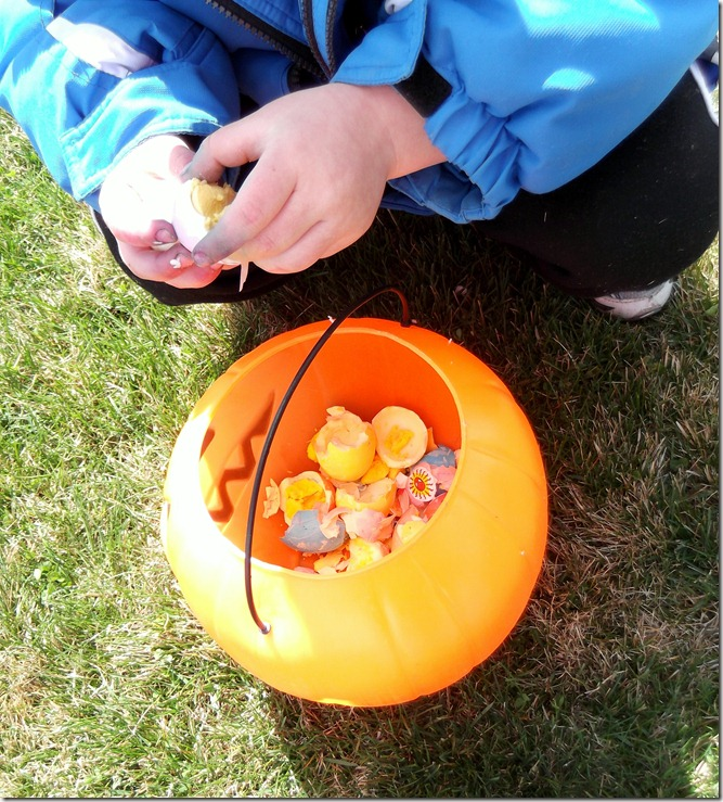 Zach's Bucket