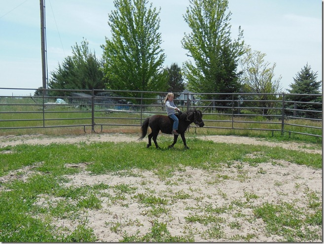 Horsecrazy and Mae