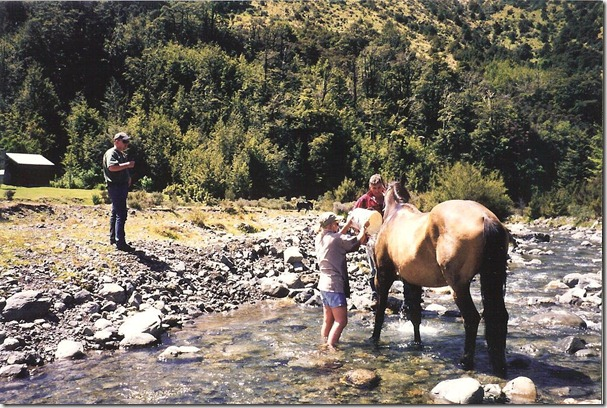 Washing Buckskin
