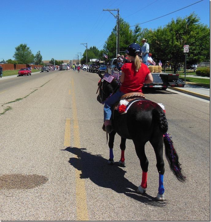 Leading the Horses