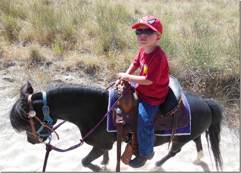 TR Spidey Rides