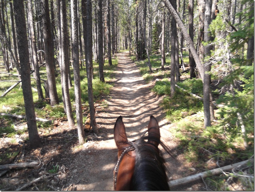 2nd Ride Trail