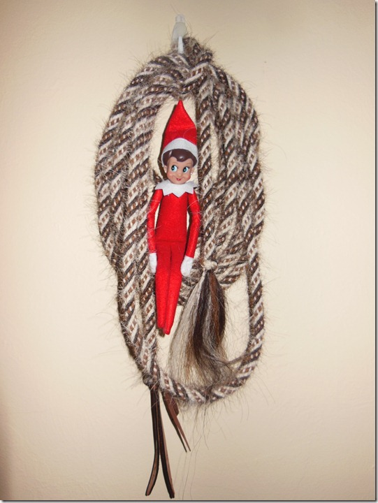 Elf on a Rope