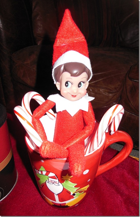 Our Elf Waits