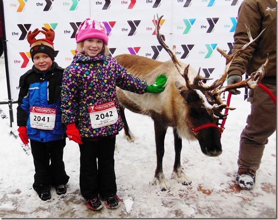 A Real Reindeer