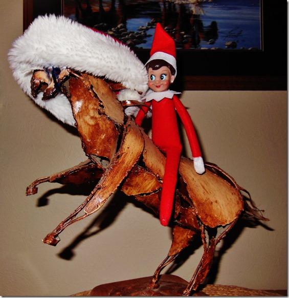 Xmas Sparkles on Horse