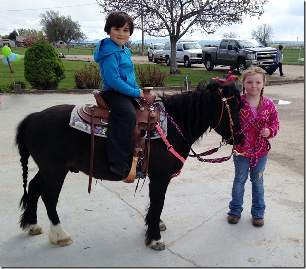 More Pony Rides