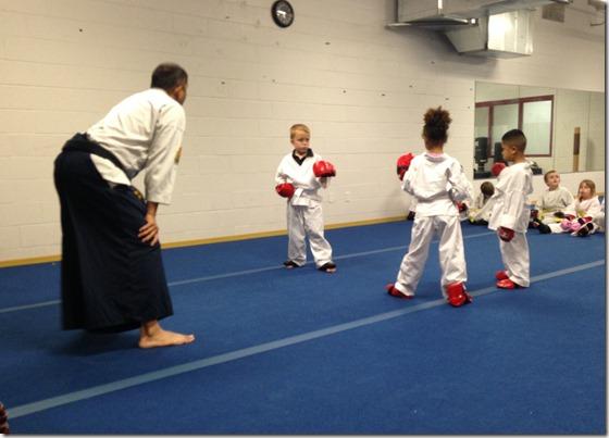 Karate Spar 10