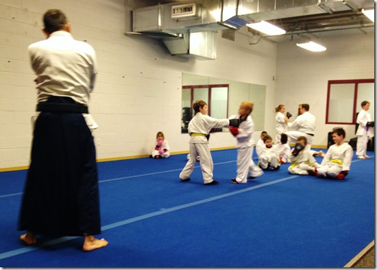 Karate Spar 5