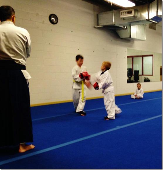 Karate Spar 6