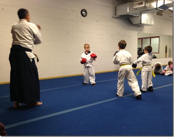 Karate Spar 7